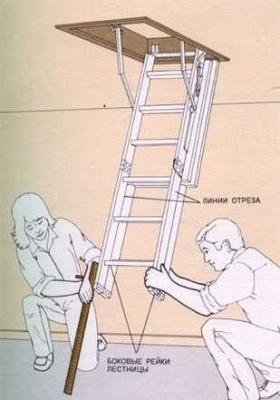 Сборные ступеньки из массива
