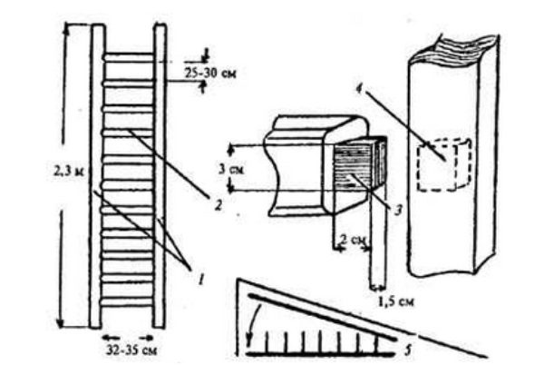 Чертеж деревянной приставной лестницы своими руками
