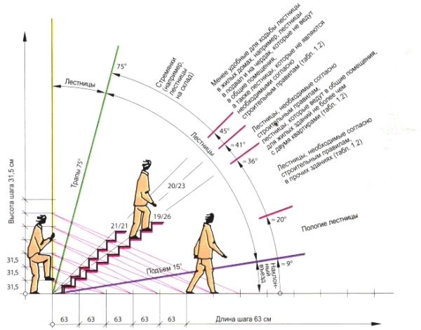 Габариты лестничной конструкции