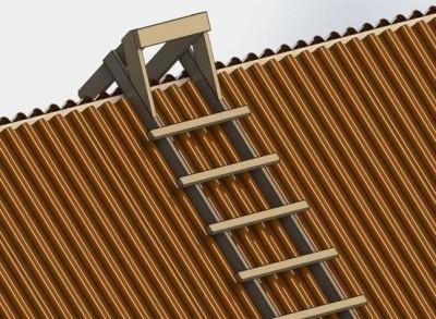 Лестница на крыше дома